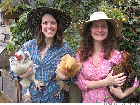 Just Us Hens: Pioneering the Chicken Sitting Business